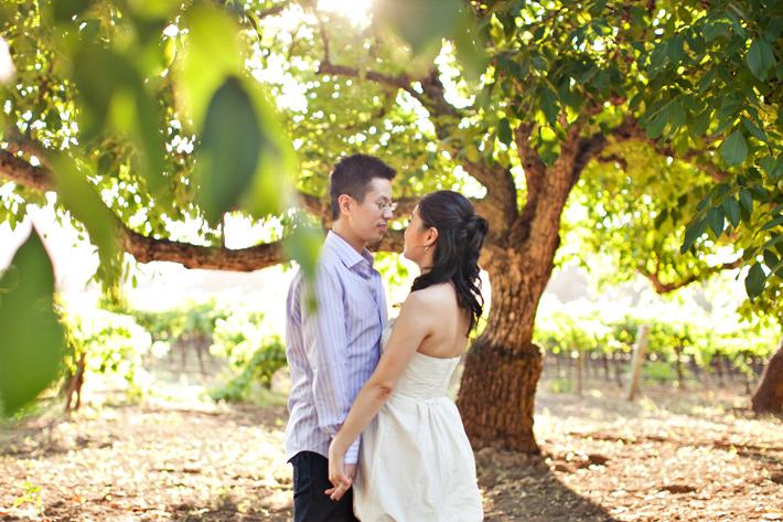 Napa Valley wedding photography, Napa Valley engagement photography, Kim Le Photography, vineyard wedding photography, Castello di Amorosa Winery Wedding photography, Bouchon wedding photography, Yountville wedding photography